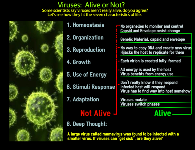 Viruses: Alive or Not?