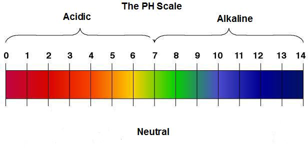 PH stands for Power of Hydrogen, The PH scale is measured ...