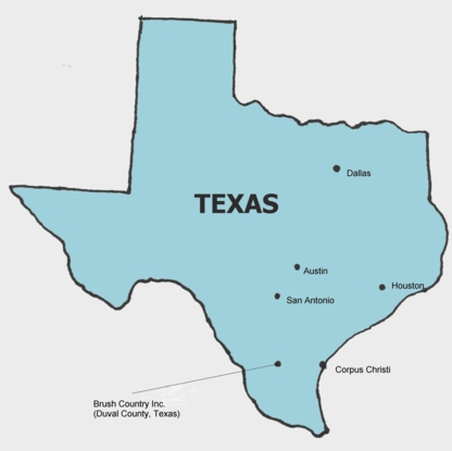Macie And Grace Texas Map ThingLink - Map of the state of texas with cities