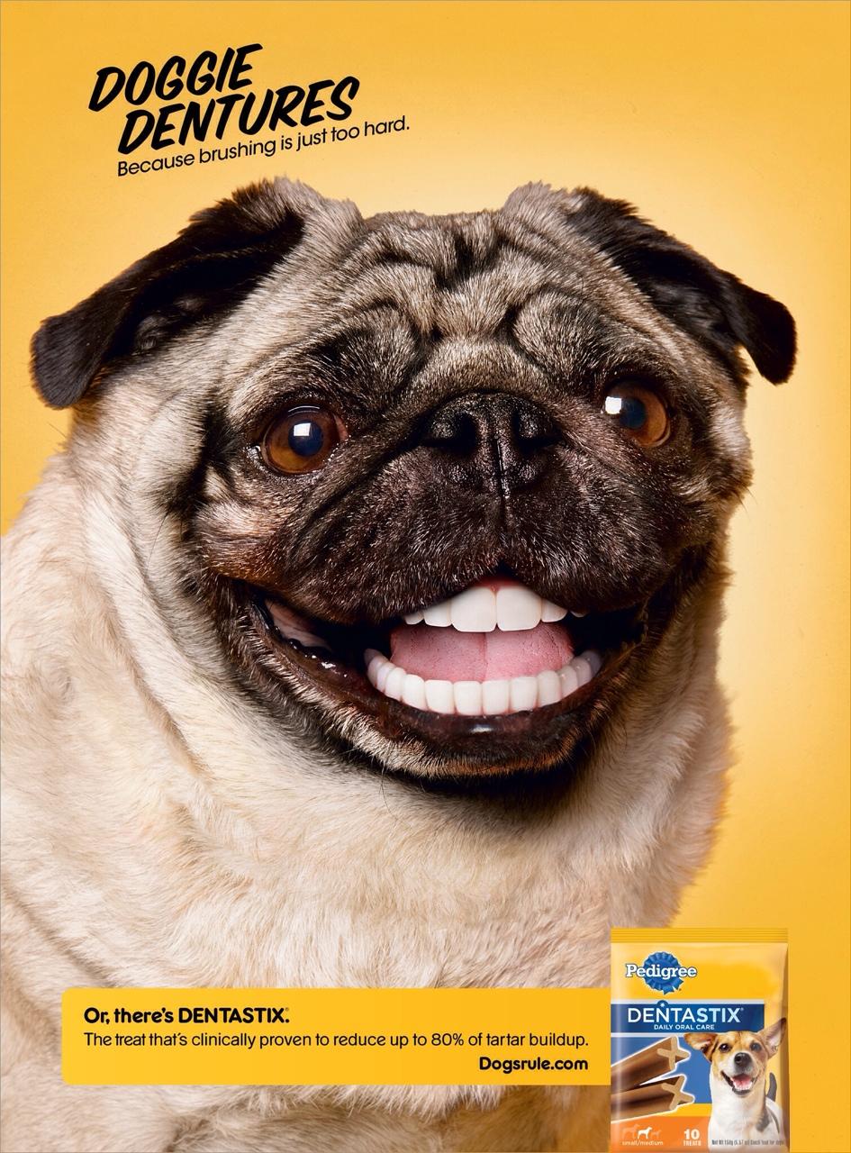 doggie dentures ad thinglink
