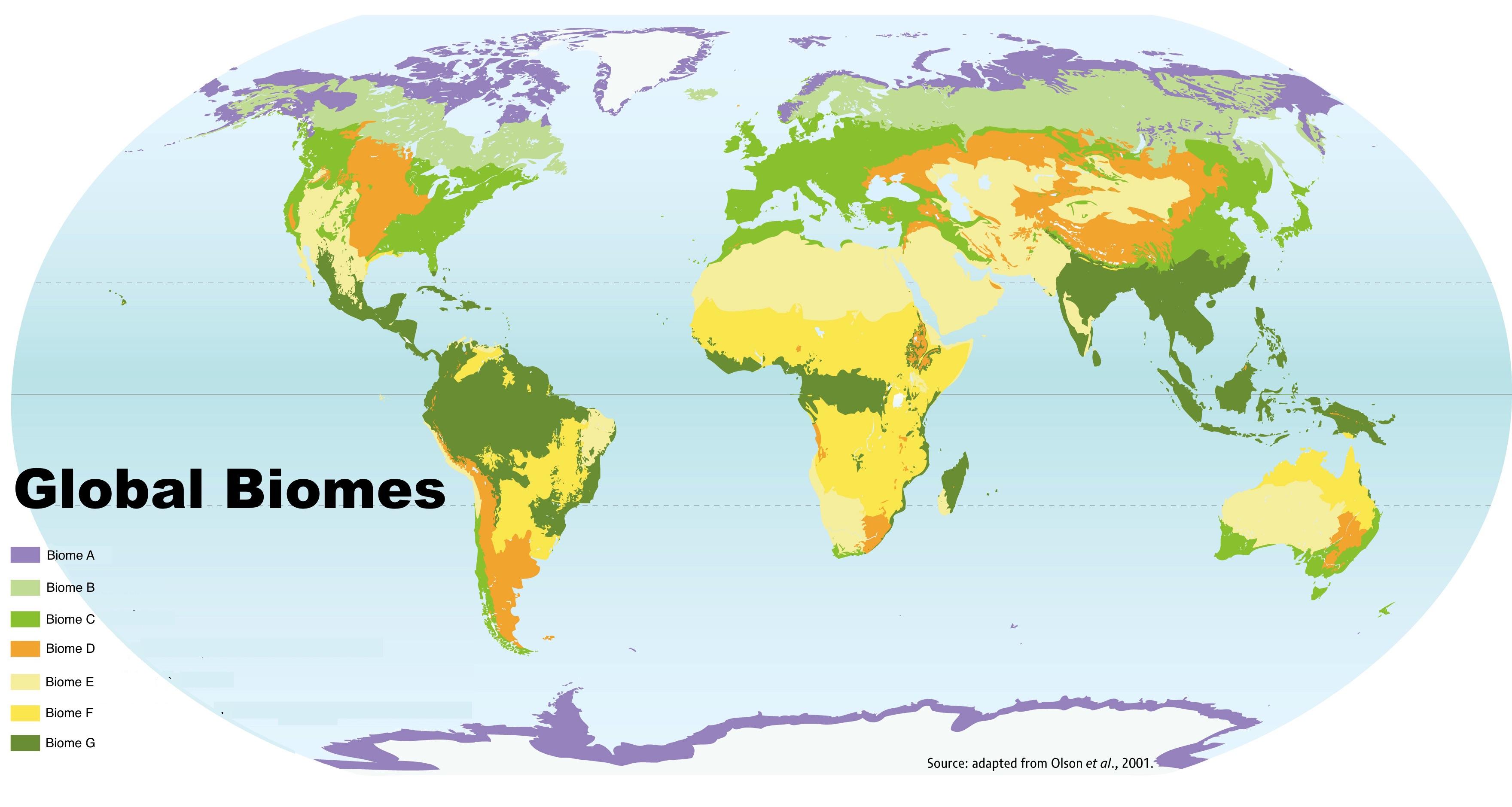 Global Biome Map