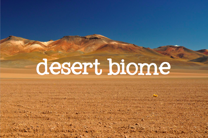 desert biome Desert the defining characteristic of a desert is that it is dry depending on its geographical location, the annual precipitation in a desert varies from half an inch to as much as 15 inches.