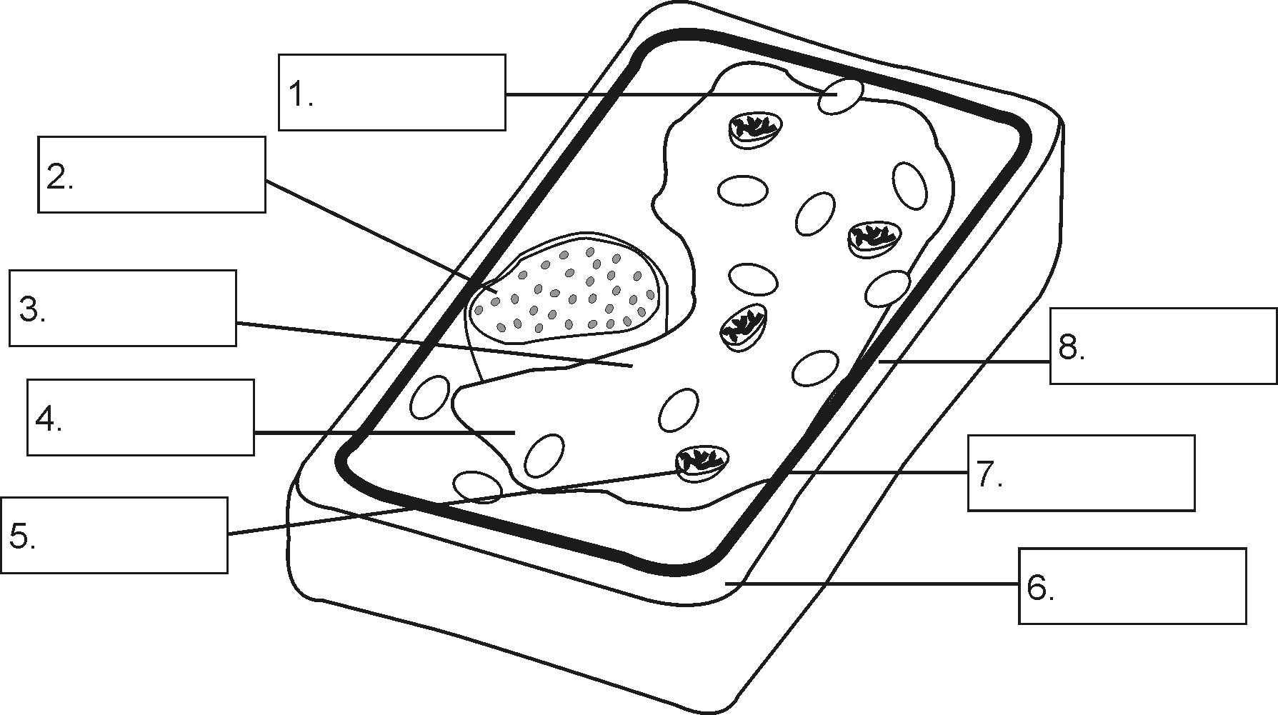 Worksheets Label Plant Cell Worksheet the structure of a plant cell thinglink