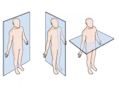 frontal plane transverse plane midsagittal plane