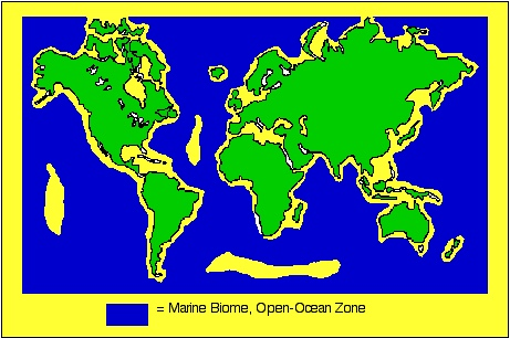 Open ocean biome thinglink gumiabroncs