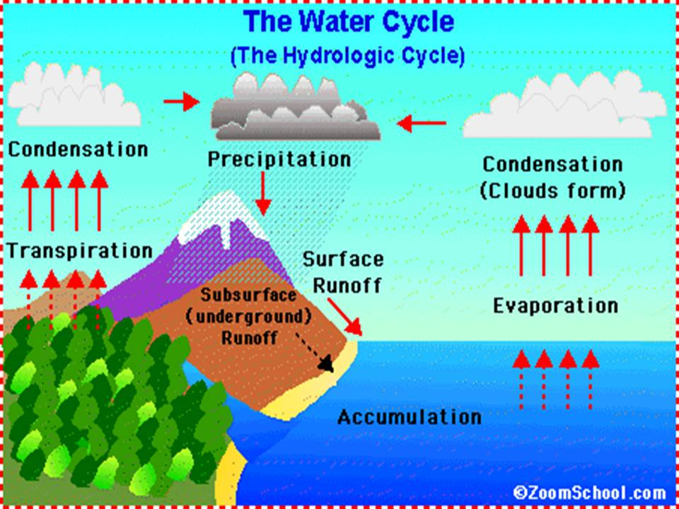 Runoff Water Cycle The Water Cycle Thinglink