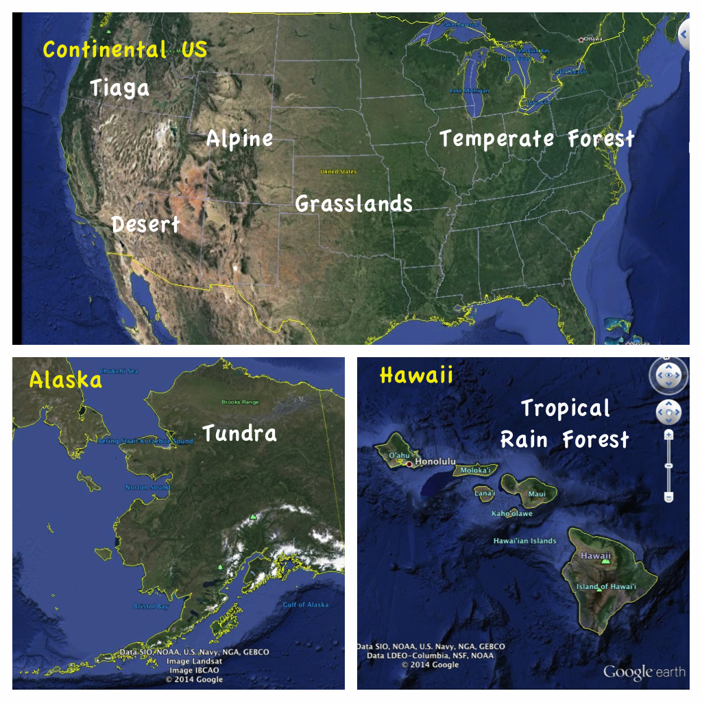 Remix Of Biomes Of The US Interactive Map Thinglink ThingLink - Biomes map of the us
